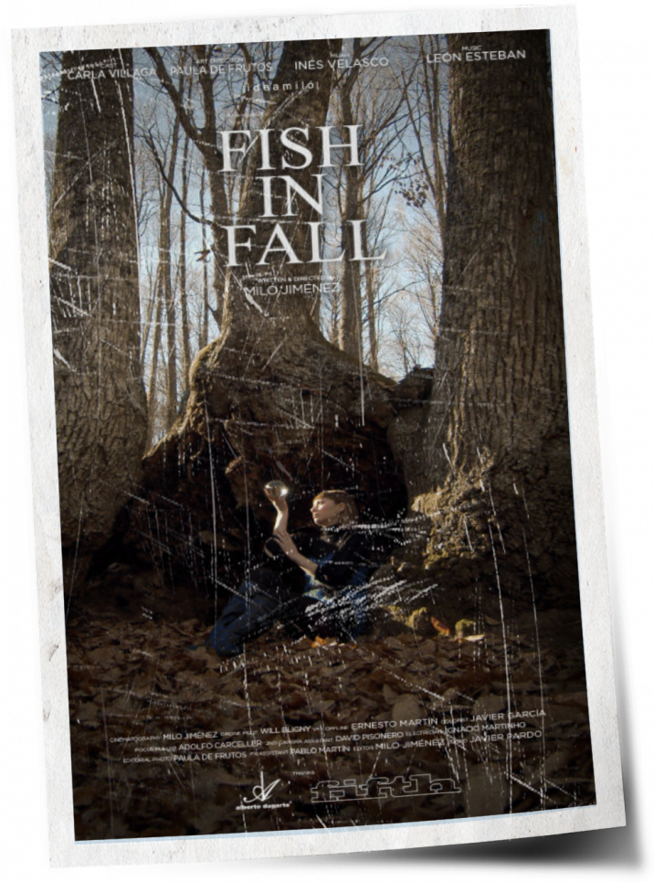 gallery/M2005 • Fish In Fall